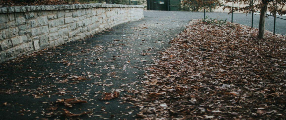 FallSidewalk 1100x480
