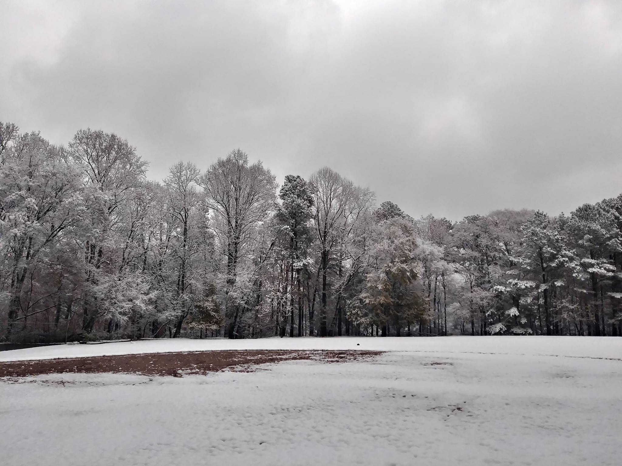 SnowChosewoodPark1